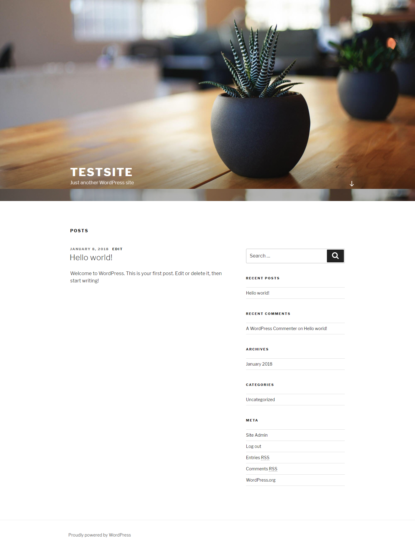 WordPress site first look - default theme